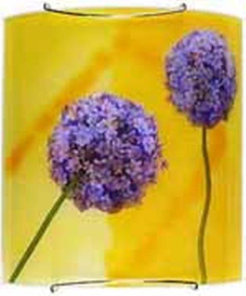 Фото Светильник настенный 10-86344 «Garlic» CND - sofino.ua