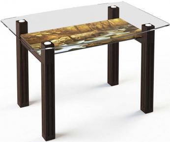 Стол обеденный «SW2» 120*75 (Верх прозрачный, низ рисунок)