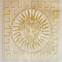 Шенилл - Версаче - 11 категория 5827-231
