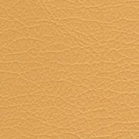 Кожзам Зевс 003_beige
