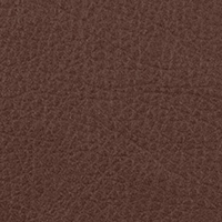 Искусственная кожа – Taurus Brown