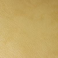 Искусственная кожа – Титан Gold Beige