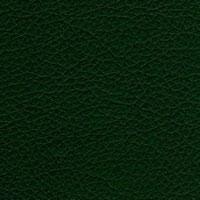 Кожзам Зевс 226_green