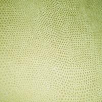 Велюр - Снейк - 12 категория 2221