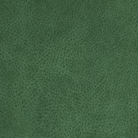 Кожзам - Лавина - 11 категория Green