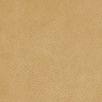 Кожзам - Лавина - 11 категория Gold