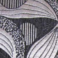 Шенилл - Дана - 3 категория Black