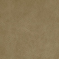 Кожзам - Лавина - 11 категория Capuchino