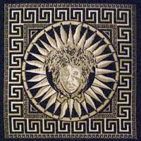 Шенилл - Версаче - 11 категория 5827-336