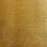 24-golden-lion-shine