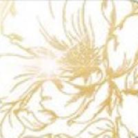 Вариант цвета Gold