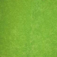 Флок - Финт - 5 категория lime