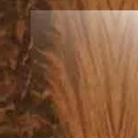 Цветовая гамма Перо орех