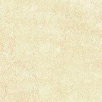 Флок - Фабио - 9 категория Ivory_13