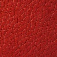 Кожзам - Мишель - 9 категория Red
