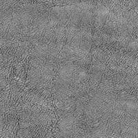 Флок - Фабио - 9 категория Grey_05