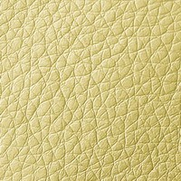 Кожзам - Мишель - 9 категория Cream