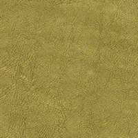 Флок - Фабио - 9 категория Lime_15