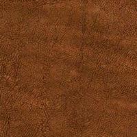 Флок - Фабио - 9 категория Chocolate_04