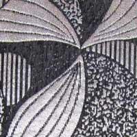 Шенилл Дана - 6 категория Black