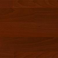 Цветовая гамма Яблоня локарно